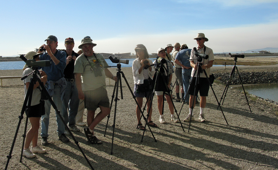 Jon Dunn, Lena Hayashi, and other birders with scopes at Bolsa Chica